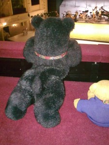 Blacky in der Oper