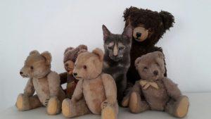 Millie mit Teddys