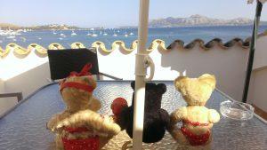 auf der terrasse mit meerblikk